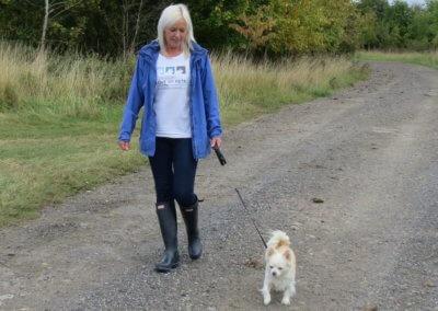 A Walk with Jasper