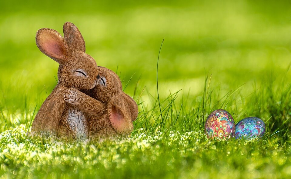 Providing a Safe and Happy Easter for your Pets